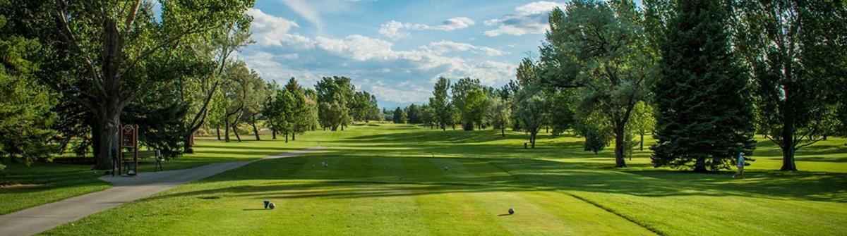 wheat montana juniors golf tour
